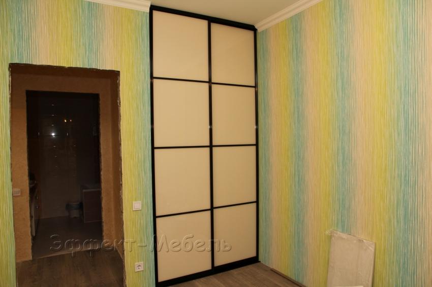 Шкаф встроенный. Двери стекло крашеное